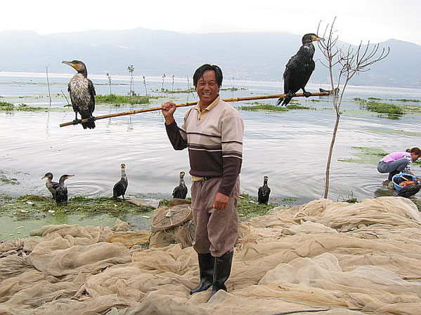 51 воспитатель птиц